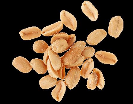 arachidi1