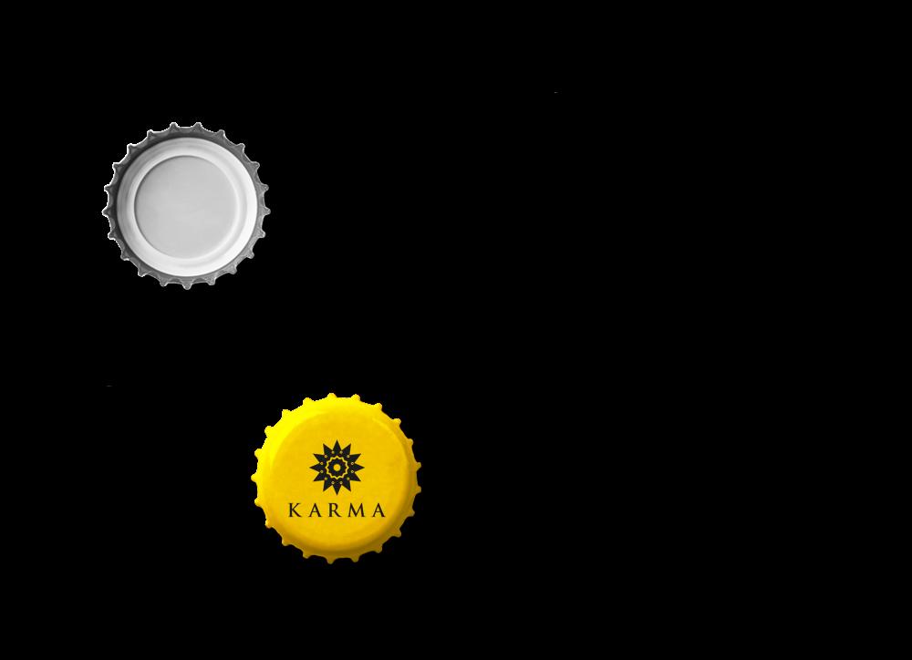 karma-2b
